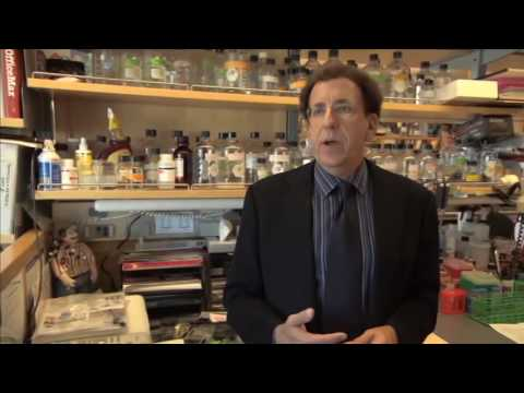 Učinki brahiterapijo raka prostate