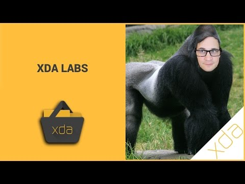 XDA Labs Lets You Browse Forum Posts, Download Apps And Xposed Modules
