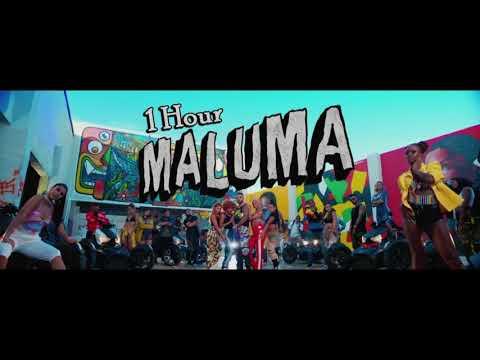 Maluma Hp 1 Hour Loop