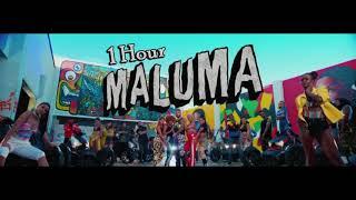 Maluma - HP [1 Hour] Loop
