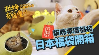 Cat's lucky bags 2019 from Japan|Unboxing Buyee|LAMUNCATS ☁