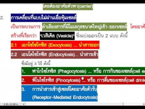 Esophageal varices รักษาชาติ