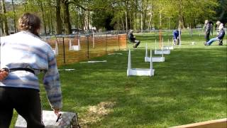 preview picture of video '2013 - Flyball - Tournoi de l'Isle Adam - Dixy & Kelly'