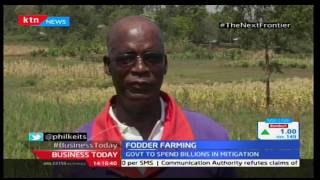 The Next Frontier: Fodder Farming in Homabay County