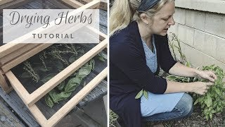 Drying Herbs // Tutorial // Healthy Eating