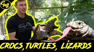 CROCS, DANGEROUS TURTLES, LIZARDS AND MORE!!!!