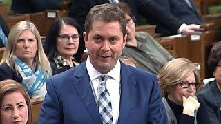 Andrew Scheer questions Prime Minister Trudeau over 'Jihadi Jack' case