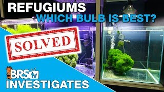 BRStv Investigates: The best refugium light test is complete, and what is coming next!
