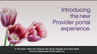 Overview of Provider Portal