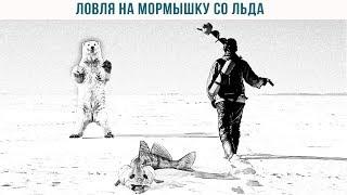 Ловля на мормышку со льда