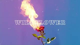 Ida Red   Wildflower (Official Audio)