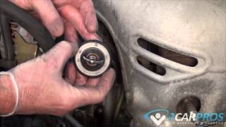 Radiator Hoses and Thermostat Replacement
