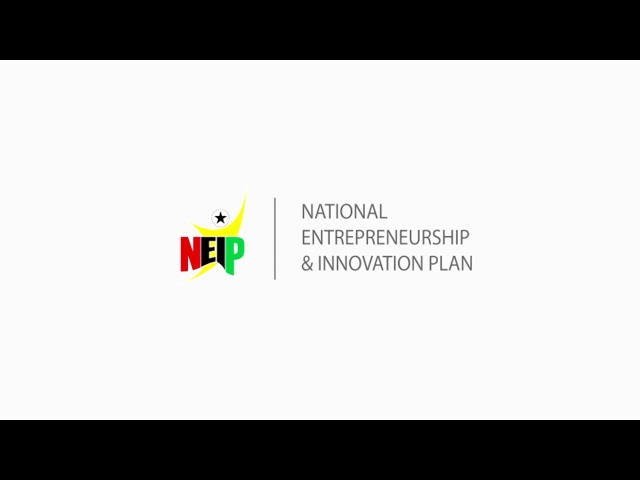 National Entrepreneurship and Innovation Programme – NEIP