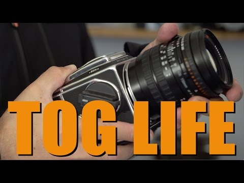 TOG LIFE - New series coming soon