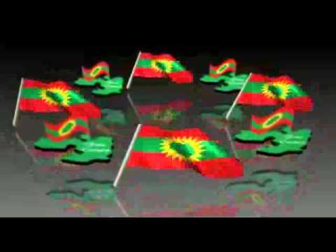 Download Adda Bilisummaa Oromoo (ABO) HD Mp4 3GP Video and MP3