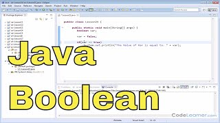 21 - The Boolean Data Type in Java