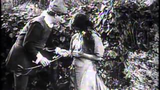 Neptune's Daughter (1914) featuring Annette Kellerman