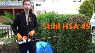 Bananenstaude schneiden   Hecke schneiden Stihl HSA 45   Wintervorbereitung Garten