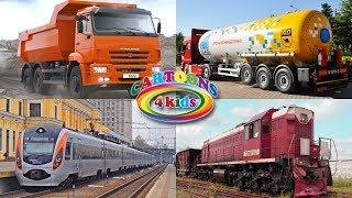 Учим цвета и машинки - Обучающее видео про транспорт для детей