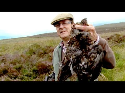 Fieldsports Britain – First grouse of 2011, 30lb salmon, 21 foxes