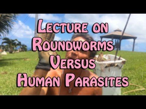Photo parasites mula perch