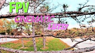 FPV Cinematic Lutz7   What is FPV Cinewhoop   Brook Xiao - Fire (ft. Rachel Horter)