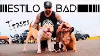 Stifler Kallahari feat.Husky Lion-Estilo Bad