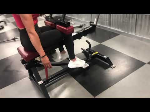 Seated Calf Raise (Toes Forward, In, & Out)