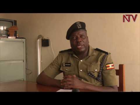 OKUTAASA EBY'OMU NSIKO:  Waliwo akwatiddwa n'eddiba lya okapi