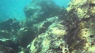 Море в Хорватии (скала)