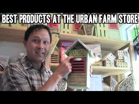Best Products for Growing Food at the Eggplant Urban Farm Store