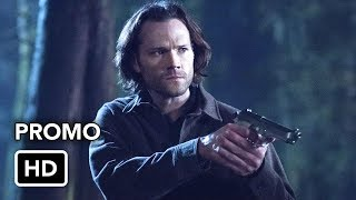 14.16 - Don't go in the woods (promo)