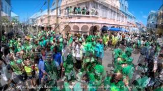 preview picture of video 'St Patrick's Day parade 2014 stx'