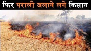 दिल्ली प्रदूषण की मार झेलने के लिए फिर रहे तैयार, पराली जला रहे हैं किसान