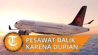 Gara-gara Bau Durian, Pilot Pesawat Umumkan Keadaan Darurat
