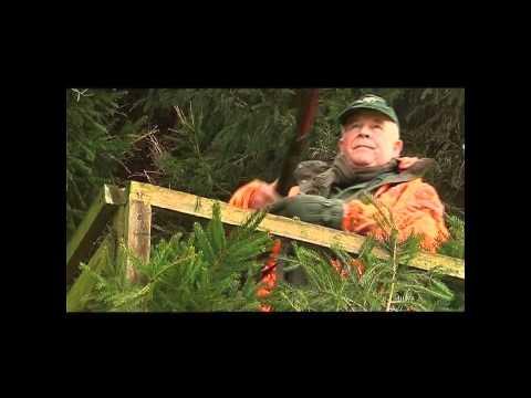 Drošība un šaušana (aktuāli jebkādās medībās)