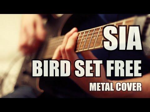 Sia - Bird Set Free // Metal Cover