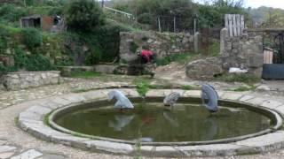 Video del alojamiento Vistahermosa