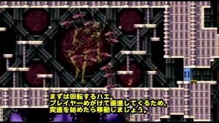 【初心者用】悪魔城ドラキュラHD 9章 ベルゼブブ 攻略 ハエ回避用