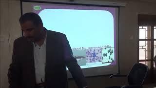 ( 1دورة أمراض الاسماك البحرية (أ. د. محمد أبو العطا
