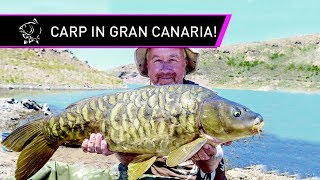 Steve Briggs Carp Fishing In The Canaries!