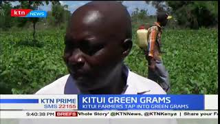 Green gram farms to profit over harvest in Kitui County