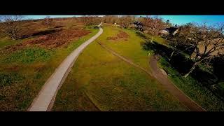 Flying in my backyard - FPV