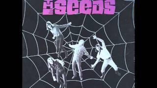 Mr. Farmer - The Seeds