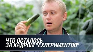 """Что осталось за кадром """"EXпериментов"""""""