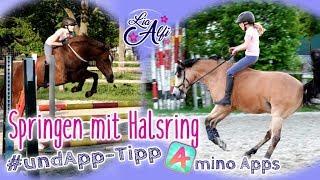 Lia & Alfi - Springen mit Halsring - App-Tipp * Amino Apps * [ neckrope riding ]