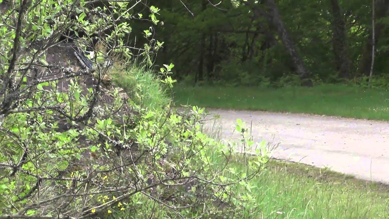 Rallye Région Limousin-Lac de Vassivière 2014 - Les Porsche Yacco