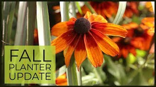 Fall Planter Change-up 🌿 ➡ 🍁 | The Impatient Gardener