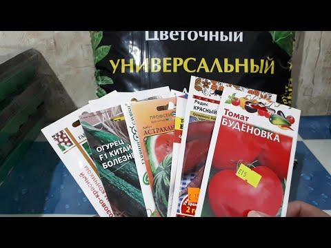 Какие семена овощных культур  купили в супермаркете.Томаты и огурцы.