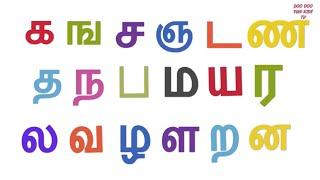 Tamil Uyirmei Ezhuthukkal | தமிழ் உயிர்மெய் எழுத்துக்கள் | க ங ச ஞ பாடல் | Tamil Alphabets & Rhymes